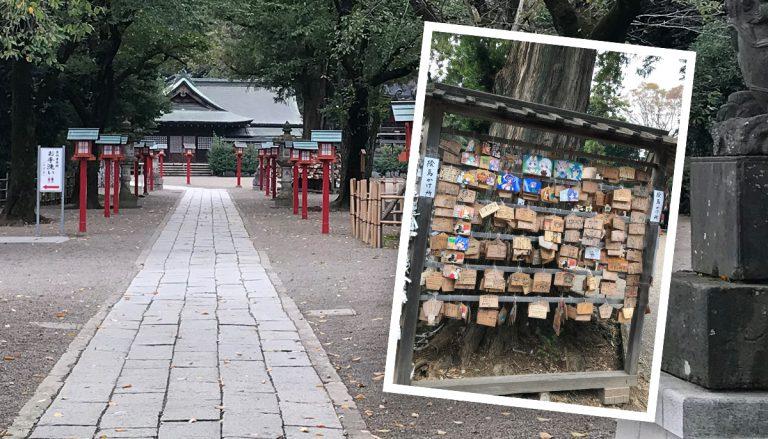 久喜市 鷲宮神社