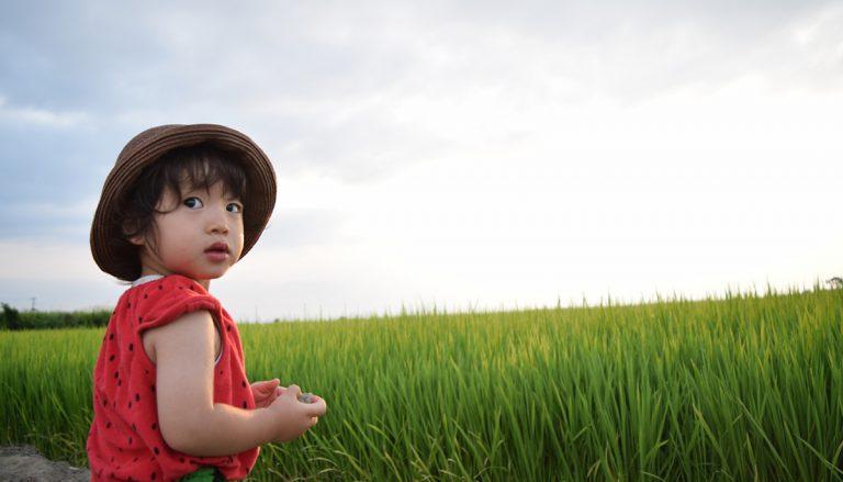 健康に良い無農薬・漢方米のお米(玄米) 低GIで血糖値上昇を抑える 農業体験で健康力アップ 埼玉県加須市 誠農社