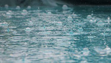 【久喜市】冠水地帯の状況調査へ -久喜市 銀の笛幼稚園周辺道路